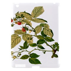 Berries Berry Food Fruit Herbal Apple Ipad 3/4 Hardshell Case (compatible With Smart Cover)