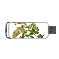 Berries Berry Food Fruit Herbal Portable Usb Flash (two Sides)