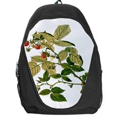 Berries Berry Food Fruit Herbal Backpack Bag