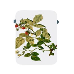 Berries Berry Food Fruit Herbal Apple Ipad 2/3/4 Protective Soft Cases