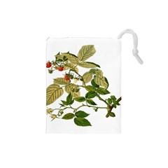 Berries Berry Food Fruit Herbal Drawstring Pouches (small)