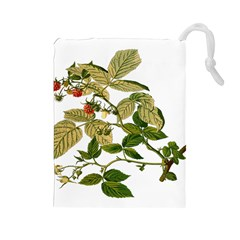 Berries Berry Food Fruit Herbal Drawstring Pouches (large)