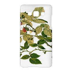 Berries Berry Food Fruit Herbal Samsung Galaxy A5 Hardshell Case