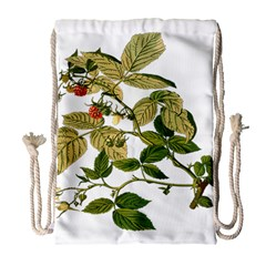 Berries Berry Food Fruit Herbal Drawstring Bag (large)