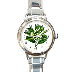 Bitter Branch Citrus Edible Floral Round Italian Charm Watch