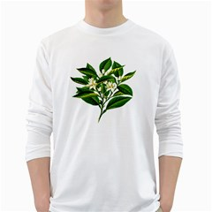 Bitter Branch Citrus Edible Floral White Long Sleeve T Shirts