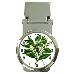 Bitter Branch Citrus Edible Floral Money Clip Watches