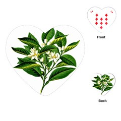 Bitter Branch Citrus Edible Floral Playing Cards (heart)
