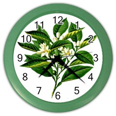 Bitter Branch Citrus Edible Floral Color Wall Clocks