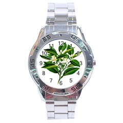 Bitter Branch Citrus Edible Floral Stainless Steel Analogue Watch