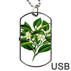 Bitter Branch Citrus Edible Floral Dog Tag Usb Flash (two Sides)