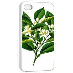Bitter Branch Citrus Edible Floral Apple Iphone 4/4s Seamless Case (white)
