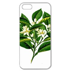 Bitter Branch Citrus Edible Floral Apple Seamless Iphone 5 Case (clear)
