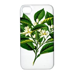 Bitter Branch Citrus Edible Floral Apple Iphone 4/4s Hardshell Case With Stand
