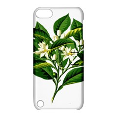 Bitter Branch Citrus Edible Floral Apple Ipod Touch 5 Hardshell Case With Stand