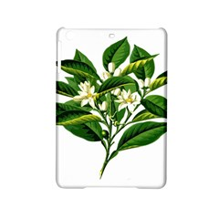 Bitter Branch Citrus Edible Floral Ipad Mini 2 Hardshell Cases