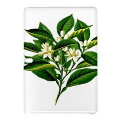 Bitter Branch Citrus Edible Floral Samsung Galaxy Tab Pro 10 1 Hardshell Case