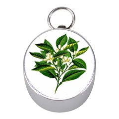 Bitter Branch Citrus Edible Floral Mini Silver Compasses