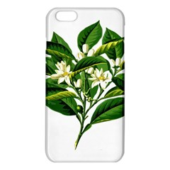 Bitter Branch Citrus Edible Floral Iphone 6 Plus/6s Plus Tpu Case
