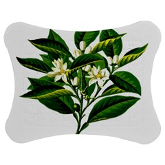 Bitter Branch Citrus Edible Floral Jigsaw Puzzle Photo Stand (bow)