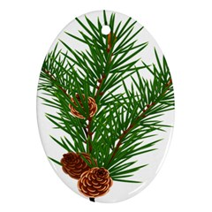 Branch Floral Green Nature Pine Ornament (oval)