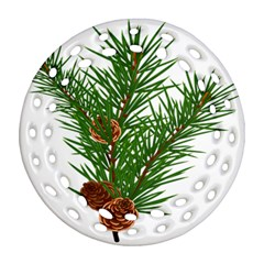 Branch Floral Green Nature Pine Round Filigree Ornament (two Sides)