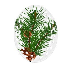 Branch Floral Green Nature Pine Oval Filigree Ornament (two Sides)