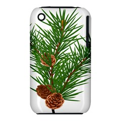 Branch Floral Green Nature Pine Iphone 3s/3gs