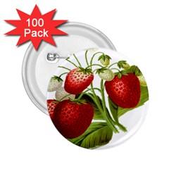 Food Fruit Leaf Leafy Leaves 2 25  Buttons (100 Pack)