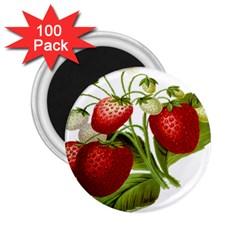 Food Fruit Leaf Leafy Leaves 2 25  Magnets (100 Pack)