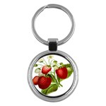 Food Fruit Leaf Leafy Leaves Key Chains (Round)  Front
