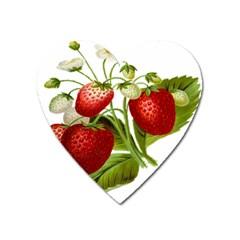 Food Fruit Leaf Leafy Leaves Heart Magnet