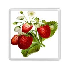 Food Fruit Leaf Leafy Leaves Memory Card Reader (square)