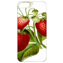 Food Fruit Leaf Leafy Leaves Apple Iphone 5 Classic Hardshell Case