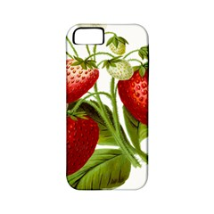 Food Fruit Leaf Leafy Leaves Apple Iphone 5 Classic Hardshell Case (pc+silicone)