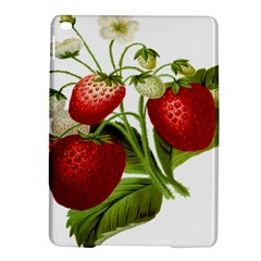 Food Fruit Leaf Leafy Leaves Ipad Air 2 Hardshell Cases