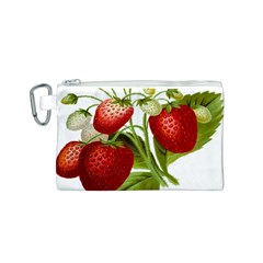 Food Fruit Leaf Leafy Leaves Canvas Cosmetic Bag (s)