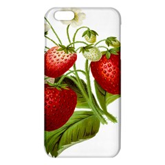 Food Fruit Leaf Leafy Leaves Iphone 6 Plus/6s Plus Tpu Case