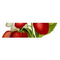Food Fruit Leaf Leafy Leaves Satin Scarf (oblong)