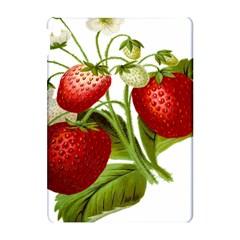Food Fruit Leaf Leafy Leaves Apple Ipad Pro 10 5   Hardshell Case