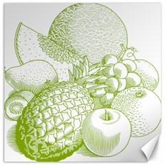 Fruits Vintage Food Healthy Retro Canvas 12  X 12