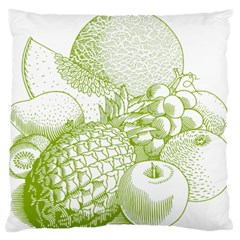 Fruits Vintage Food Healthy Retro Standard Flano Cushion Case (two Sides)