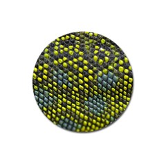 Lizard Animal Skin Magnet 3  (round)