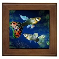 Marine Fishes Framed Tiles