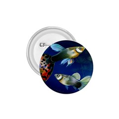Marine Fishes 1 75  Buttons