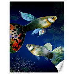 Marine Fishes Canvas 12  X 16