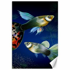 Marine Fishes Canvas 12  X 18