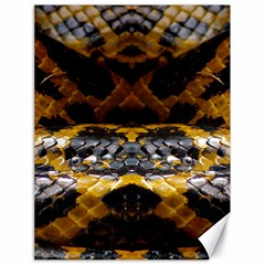 Textures Snake Skin Patterns Canvas 18  X 24