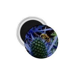 Chihuly Garden Bumble 1 75  Magnets