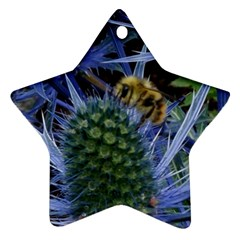 Chihuly Garden Bumble Ornament (star)